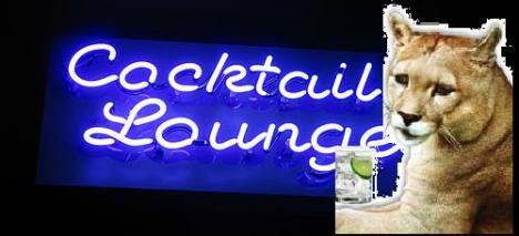 puma-lounge4
