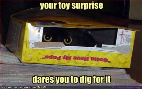 funny-pictures-there-is-a-surprise-in-your-cereal-box