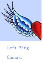 left-wing