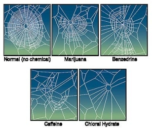 Spiders with Substance Abuse Issues weave weird webs