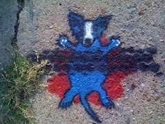 medium_squashed-blue-dog