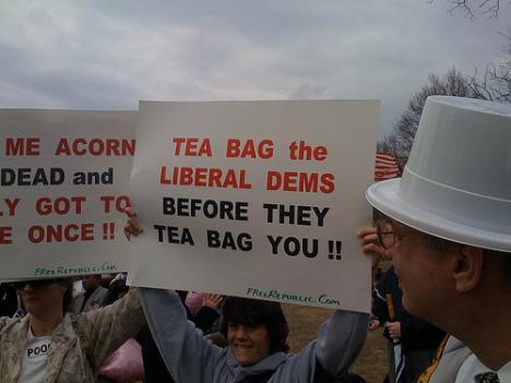 tea-baggers-washington_independent