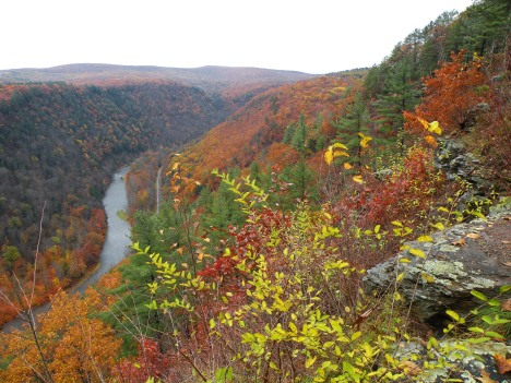 Pine Creek Gorge 1 10-24-09