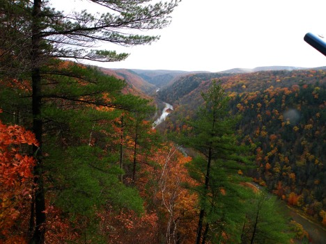 Pine Creek Gorge Valley